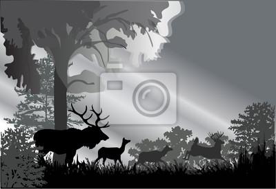 siluetas de ciervos en el bosque gris