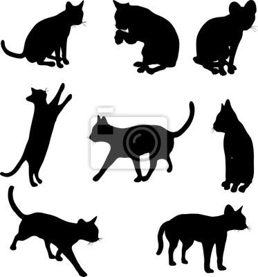 siluetas del gato