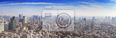Skyline de Tokio, Japón con la Torre de Tokio, desde arriba