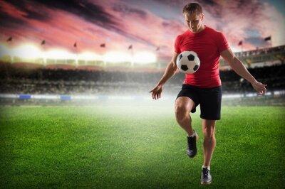 Cuadro Soccer. Professional soccer player kicking ball