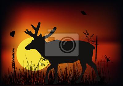 solo ciervo al atardecer ilustración