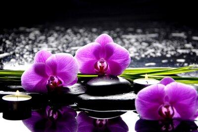 Cuadro Spa Bodegón con juego de color rosa orquídea y piedras reflexión