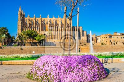 Spanien Palma de Mallorca Kathedrale La Seu y Parque de La Mar en Frühling