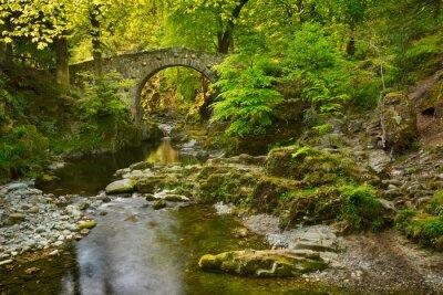 Stone bridge over a river in Northern Ireland