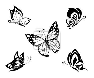 Tattoo Mariposas Negras Y Blancas Juego Pinturas Para La Pared