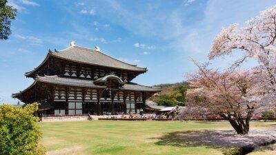 Cuadro Templo de Todaiji en la temporada de sakura en Nara, Japón
