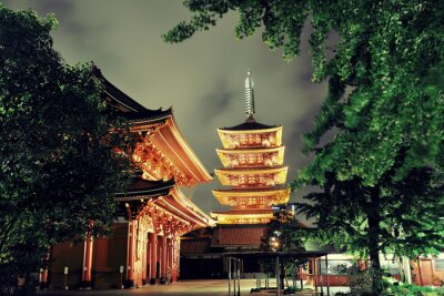Cuadro Templo de Tokio