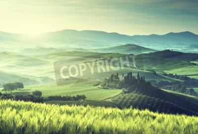 Cuadro Temprano en la mañana de primavera en la Toscana, Italia