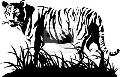 cuadro tigre blanco y negro vector - Cuadros En Blanco Y Negro
