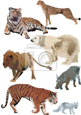 Cuadro tigres y otros animales