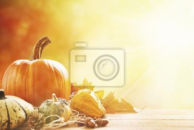Todavía del otoño vida a pleno sol