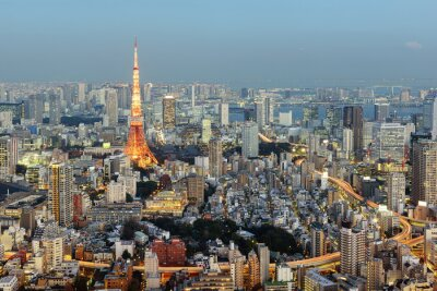 Cuadro Tokio; Japón - 14 de enero; 2016: Vista nocturna de Tokio Skyline con la icónica Torre de Tokio en el fondo.