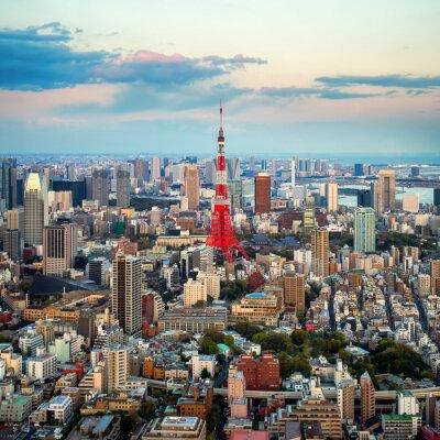 Cuadro Tokio vista a la ciudad visible en el horizonte