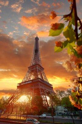Cuadro Torre Eiffel durante la hermosa mañana de primavera en París, Francia