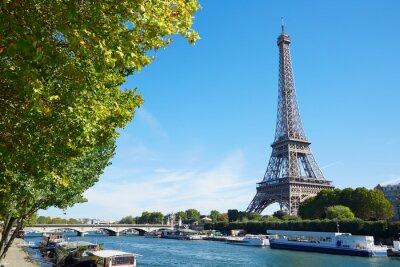 Cuadro Torre Eiffel y el río Sena vista con ramas de árboles verdes, soleado