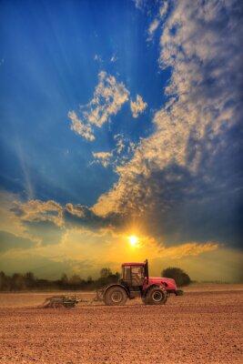 Cuadro Tractor en el campo