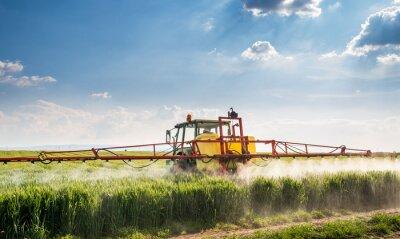 Cuadro Tractor pulverizando el campo de trigo