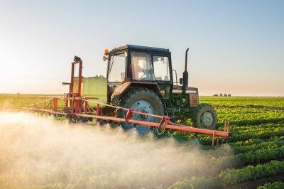 Cuadro Tractor pulverizando soja