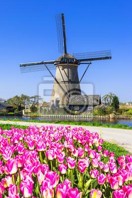 Tradicional, Holanda, campo, molinos de viento, tulipanes