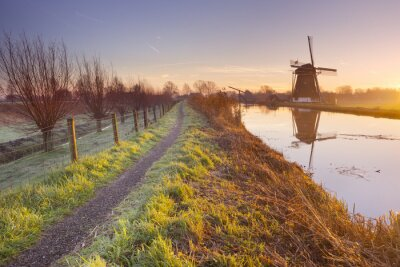 Cuadro Tradicional molino de viento holandés en los Países Bajos al amanecer