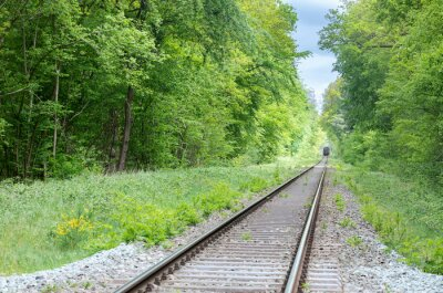 train on railway in green forest between trees