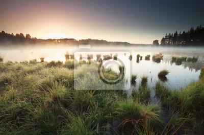 Tranquilo brumoso amanecer en el lago salvaje