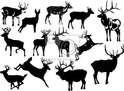 trece siluetas de ciervos
