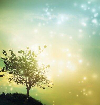 Cuadro Tree silhouette at twilight