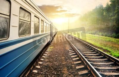 Cuadro Tren que se mueve a través del bosque de pinos en la puesta del sol