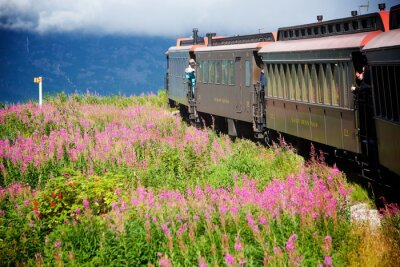 Cuadro Trenes de Alaska