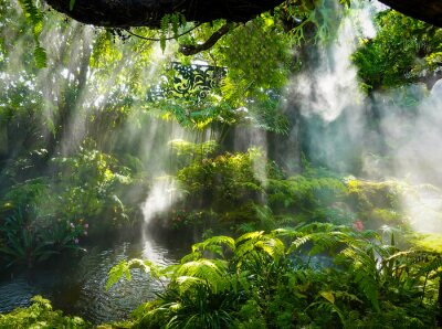 Cuadro Tropical jungle with river and sun  beam  and foggy in the garden