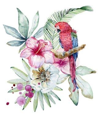 Cuadro Tropical watercolor illustration
