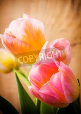 Cuadro Tulipanes, fondo floral.