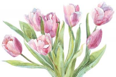Cuadro Tulipanes ramo de acuarela ilustración