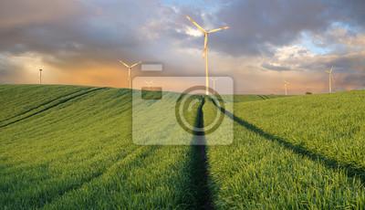 Turbinas de viento en el campo de primavera