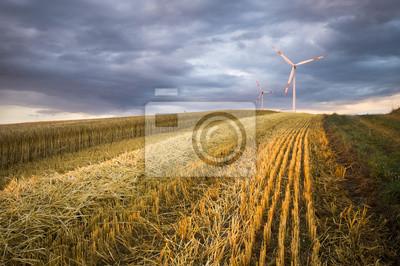 Turbiny wiatrowe na zboża polach, Niemcy
