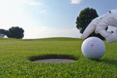 Cuadro un hombre que empuja una bola en un hoyo de golf