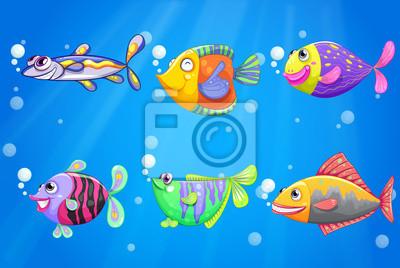 Cuadros con peces imagen peces koi carpa pintura canvas for Cuadros de peces