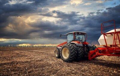 Cuadro Un poderoso tractor trabaja en el campo