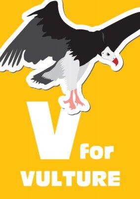 Cuadro V para el buitre, un alfabeto de los animales para los niños
