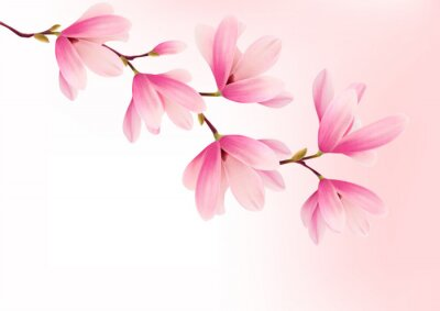 Cuadro Valentine background with pink flowers. Vector.