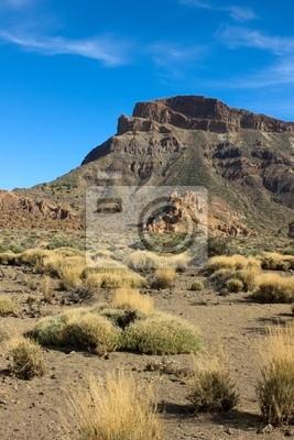valle del Teide, Tenerife, España