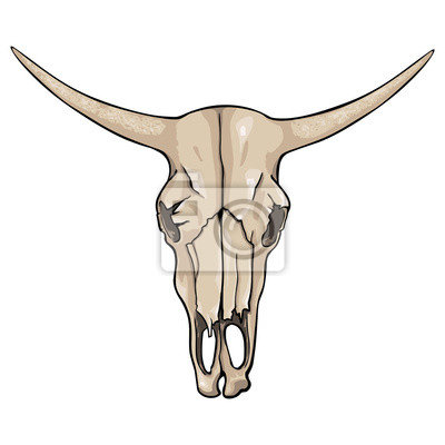 Vector aislado de dibujos animados - cráneo de vaca vieja pinturas ...