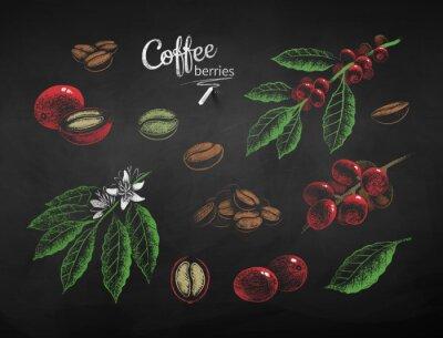 Cuadro Vector chalk drawn set of coffee illustrations