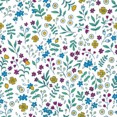 Cuadro Vector colorido patrón transparente floral