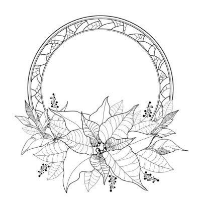 Vector poinsettia o estrella de navidad, hojas y marco redondo ...
