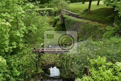 Végétation sauvage cerca de l'ancien moulin à eau à côté des Jardins d'Eau d'Annevoie