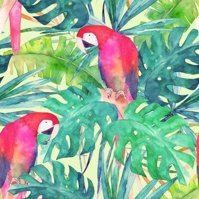 Cuadro Verano sin patrón con acuarela loro, hojas de palma. Ilustración colorida