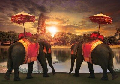Cuadro vestidor elefante con accesorios tradición reino tailandés standi