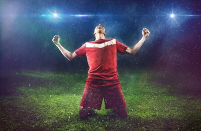 Cuadro Victorioso Jugador de fútbol